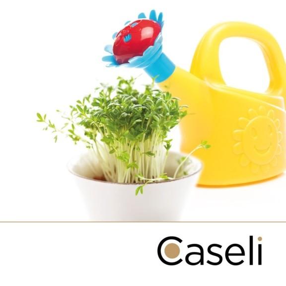 Caseli Mittagstisch für Kindergärten
